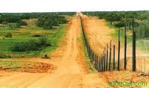 забор австралия